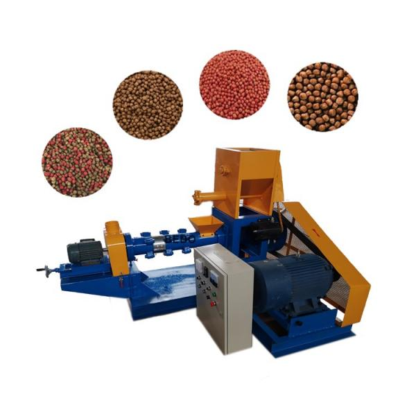 Small Middle Big Size Fish Feed Pellet Extruding Machine Animal Fodder Production Machinery Plant Device