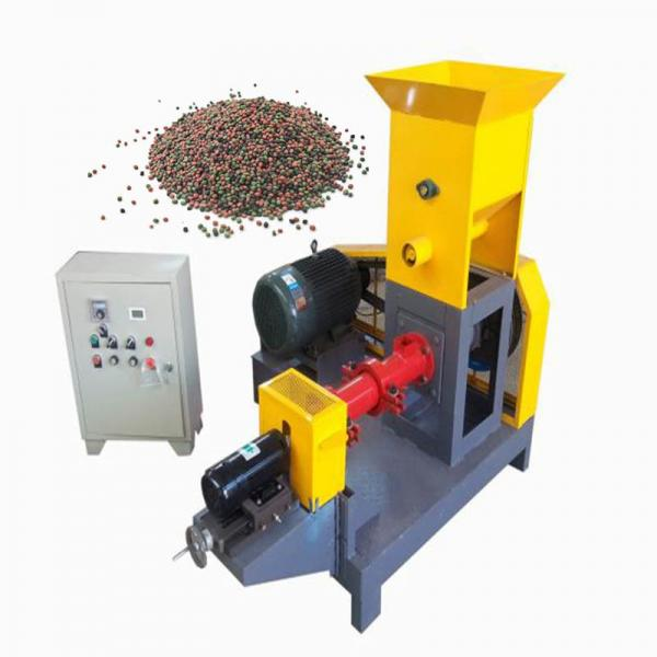 South Africa Floating Fish Feed Pellet Making Commercial Machine Equipment Process Production Line
