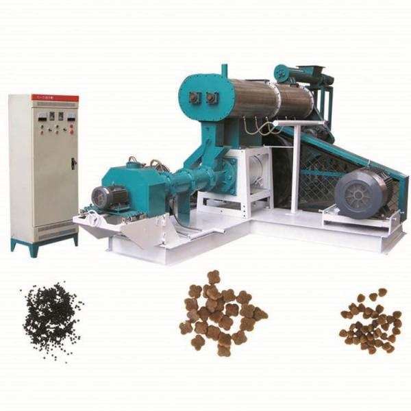 Fish Feed Pellet Extruder Machine Complete Floating Fish Feed Production Line